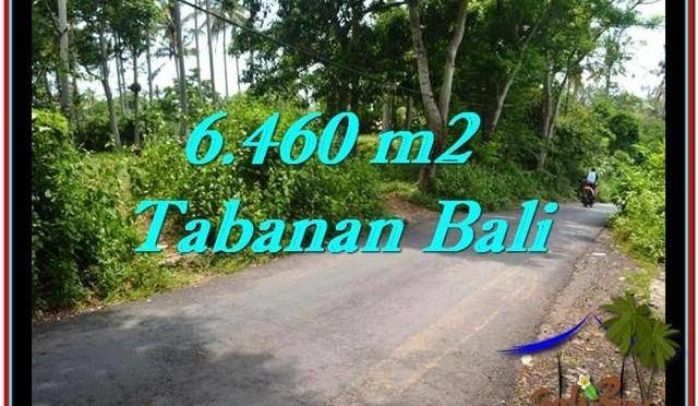 INVESTASI PROPERTY, TANAH MURAH di TABANAN BALI TJTB256