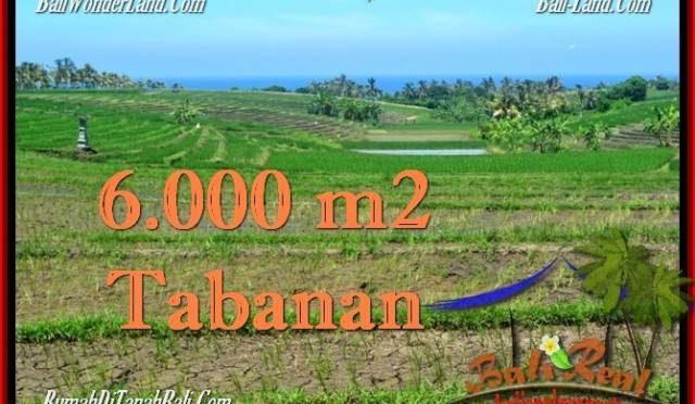 TANAH di TABANAN DIJUAL 6,000 m2 di Tabanan Selemadeg