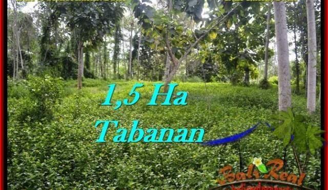 TANAH di TABANAN DIJUAL Untuk INVESTASI TJTB272