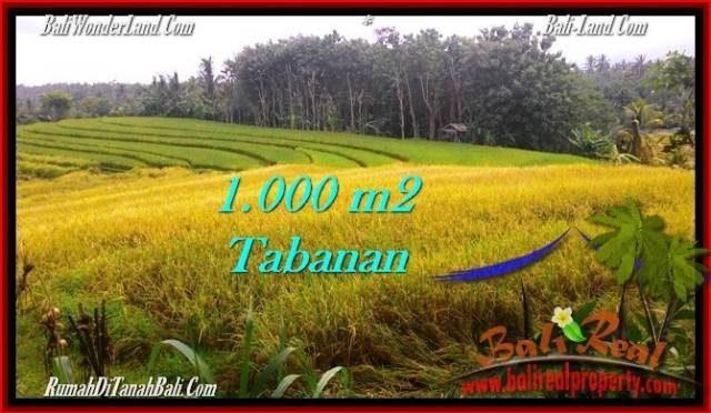 INVESTASI PROPERTY, TANAH MURAH di TABANAN BALI TJTB273
