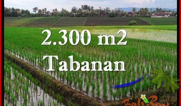 INVESTASI PROPERTY, TANAH MURAH di TABANAN BALI TJTB263