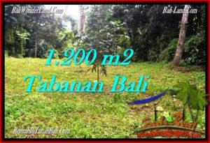 DIJUAL TANAH di TABANAN BALI 1,200 m2 di Tabanan Penebel