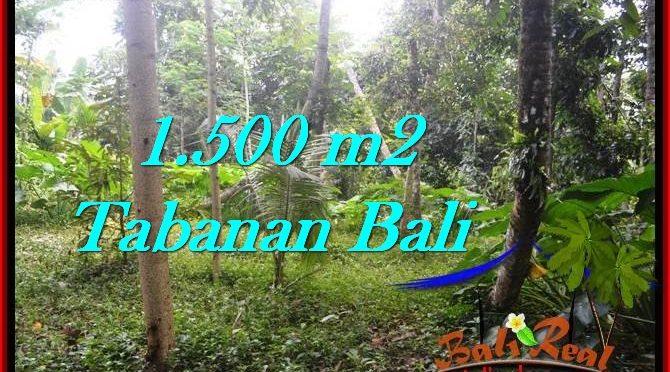 DIJUAL TANAH di TABANAN BALI Untuk INVESTASI TJTB279
