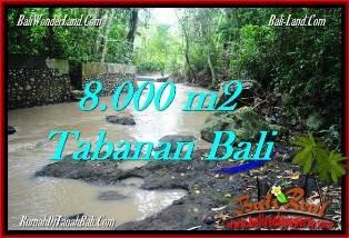 JUAL TANAH di TABANAN BALI 80 Are View kebun dan sungai