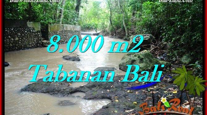 JUAL TANAH MURAH di TABANAN BALI 8,000 m2 di Tabanan Selemadeg