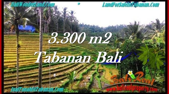 TANAH di TABANAN BALI DIJUAL MURAH TJTB274