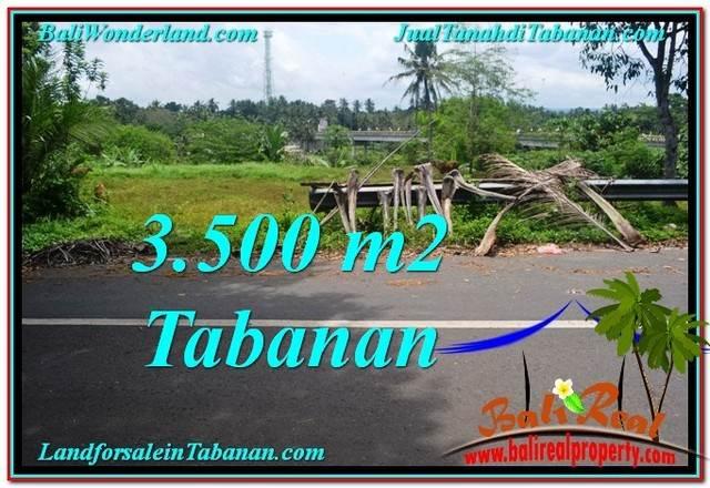 TANAH JUAL MURAH TABANAN 35 Are View kebun