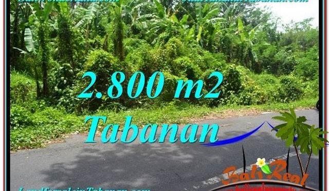 INVESTASI PROPERTY, TANAH MURAH di TABANAN BALI TJTB300