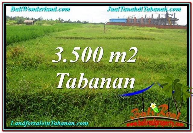 TANAH di TABANAN DIJUAL 3,500 m2 di Tabanan Kerambitan