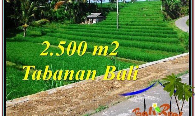 TANAH di TABANAN DIJUAL 2,500 m2 di Tabanan Penebel