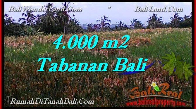 TANAH DIJUAL MURAH di TABANAN BALI 4,000 m2 di Tabanan Selemadeg