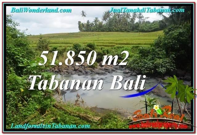 JUAL TANAH MURAH di TABANAN BALI 518.5 Are di Tabanan Selemadeg