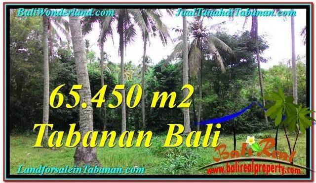 TANAH JUAL MURAH TABANAN 654.5 Are View laut dan sungai