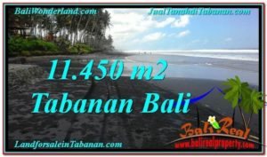 TANAH DIJUAL MURAH di TABANAN BALI TJTB291