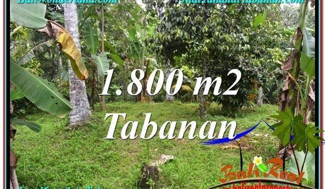 TANAH JUAL MURAH  TABANAN 18 Are View kebun dan sungai