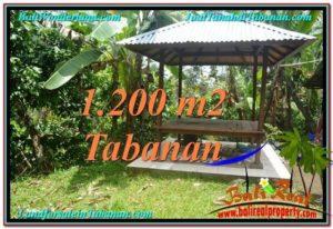 INVESTASI PROPERTI, DIJUAL TANAH di TABANAN BALI TJTB294