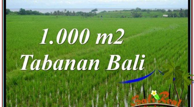 JUAL MURAH TANAH di TABANAN BALI 10 Are View Laut, Gunung dan sawah