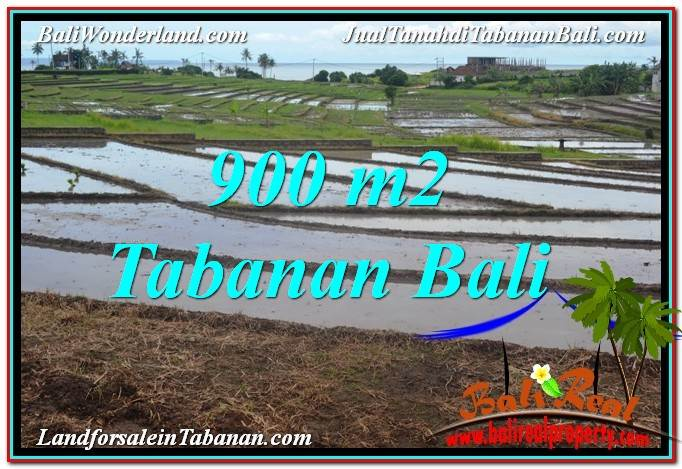 JUAL TANAH di TABANAN BALI Untuk INVESTASI TJTB308