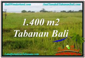 TANAH MURAH di TABANAN JUAL 1,400 m2  View Laut, Gunung dan sawah