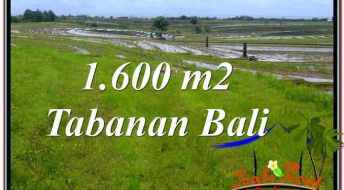 JUAL TANAH di TABANAN 1,600 m2 di Tabanan Selemadeg