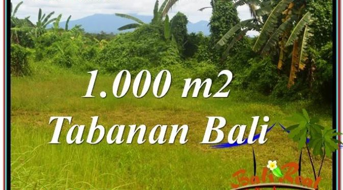 DIJUAL TANAH di TABANAN BALI 1,000 m2 di Tabanan Selemadeg