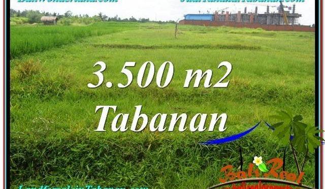 DIJUAL TANAH di TABANAN BALI 3,500 m2 di Tabanan Kerambitan