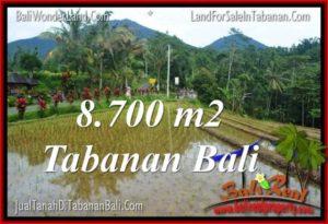 JUAL TANAH MURAH di TABANAN BALI 8,700 m2 di Tabanan Penebel