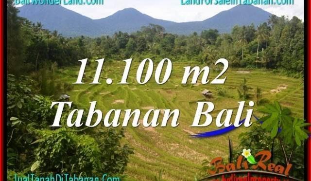 TANAH MURAH di TABANAN 111 Are View gunung dan sawah
