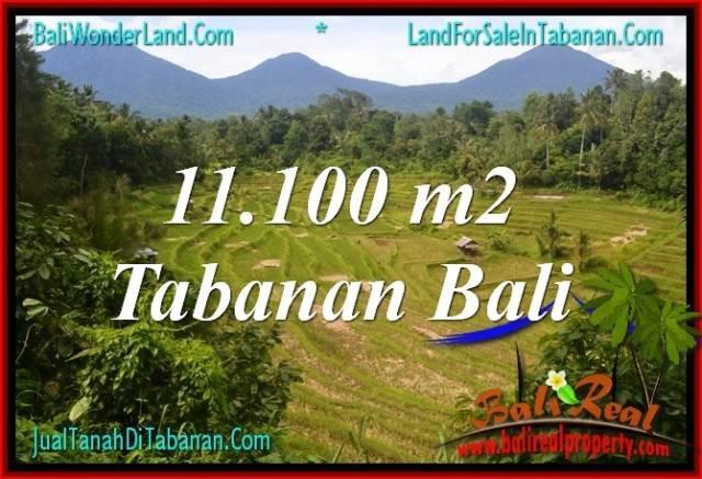 DIJUAL TANAH MURAH di TABANAN BALI Untuk INVESTASI TJTB320