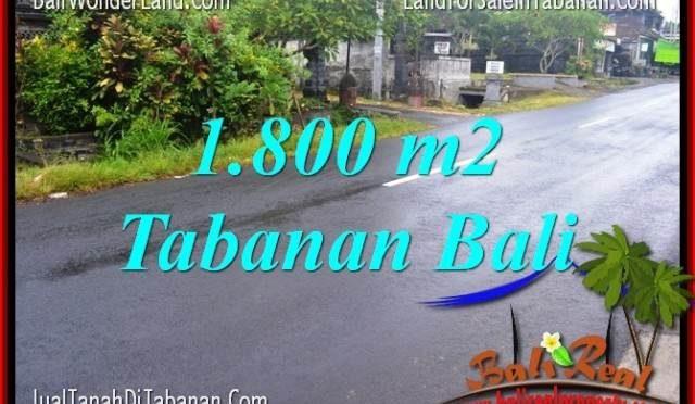 JUAL TANAH MURAH di TABANAN 18 Are View sawah