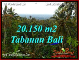 INVESTASI PROPERTY, TANAH di TABANAN DIJUAL MURAH TJTB322