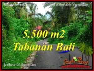 TANAH MURAH DIJUAL di TABANAN TJTB323