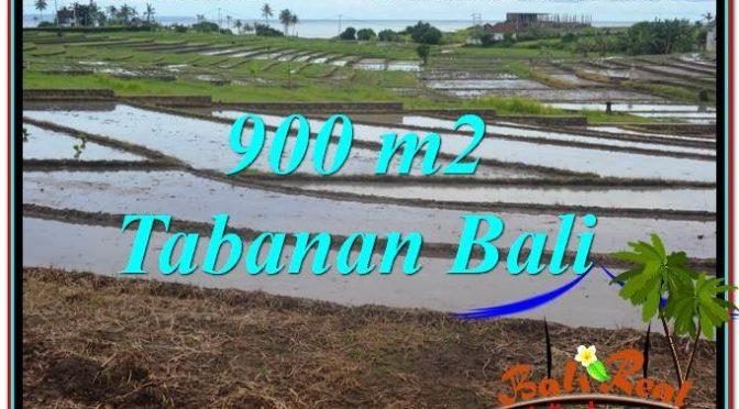 DIJUAL MURAH TANAH di TABANAN Untuk INVESTASI TJTB308