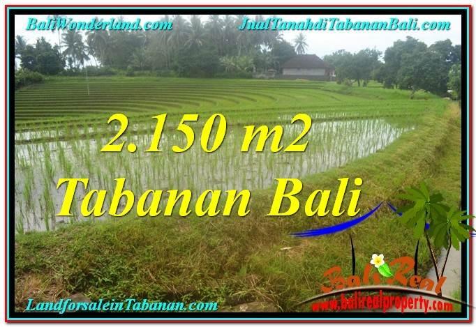 JUAL TANAH di TABANAN BALI Untuk INVESTASI TJTB312