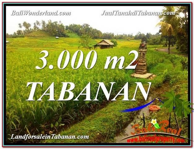 JUAL TANAH di TABANAN BALI 3,000 m2 View gunung dan sawah