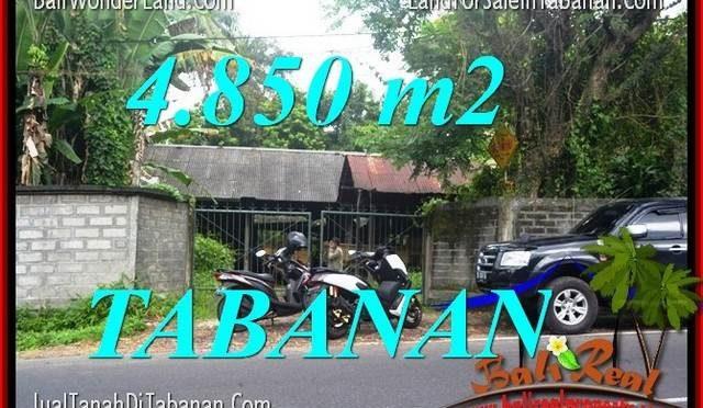TANAH MURAH di TABANAN JUAL 48.5 Are View Kebun