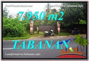 JUAL TANAH di TABANAN 7,950 m2  View Kebun