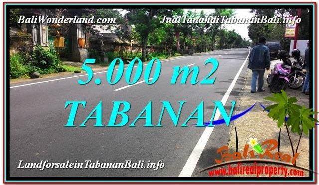 TANAH di TABANAN DIJUAL MURAH 50 Are di Badung