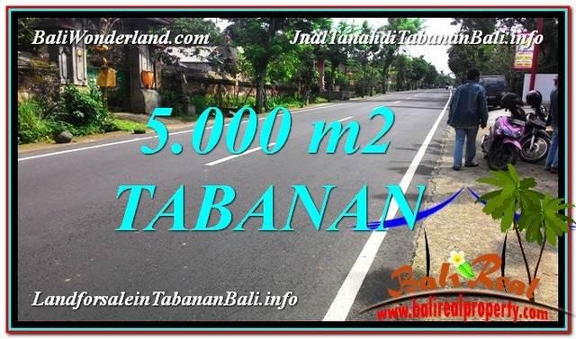 DIJUAL TANAH di TABANAN 5,000 m2 di Badung