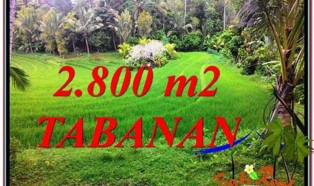 TANAH di TABANAN DIJUAL MURAH Untuk INVESTASI TJTB333