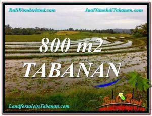 TANAH MURAH di TABANAN 8 Are View laut dan sawah