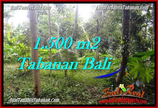 JUAL MURAH TANAH di TABANAN BALI 15 Are View kebun