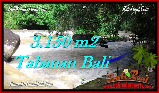 TANAH MURAH JUAL TABANAN 3,150 m2 View kebun dan sungai