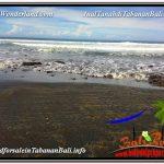 JUAL TANAH di TABANAN BALI 84 Are View laut dan Lingkungan Villa