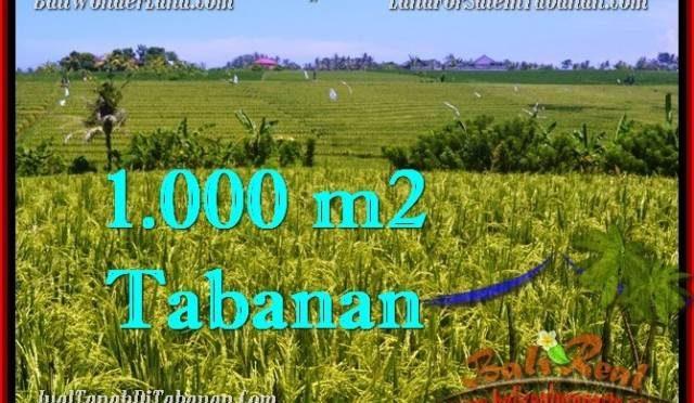 TANAH di TABANAN JUAL MURAH 10 Are View sawah, gunung