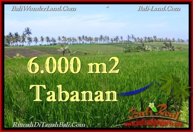 TANAH MURAH JUAL di TABANAN BALI 6,000 m2 View Laut, Sawah dan Gunung