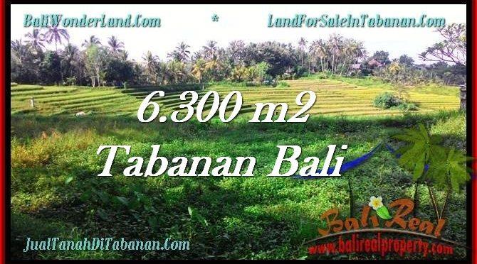 JUAL MURAH TANAH di TABANAN BALI 63 Are view Sawah dan Gunung