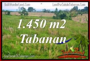 DIJUAL MURAH TANAH di TABANAN BALI Untuk INVESTASI TJTB343