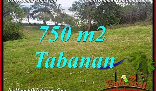 JUAL TANAH di TABANAN 750 m2  View laut dan sawah