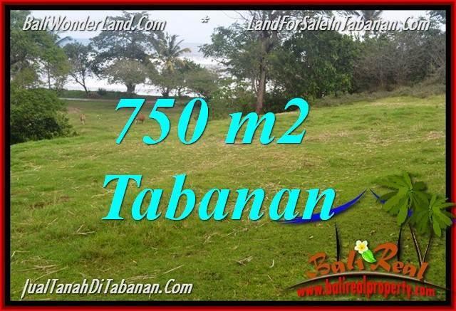 JUAL TANAH MURAH di TABANAN BALI TJTB346